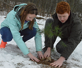 Eighth-graders Sophie Millhouse and Bailey Vandenberg plant a white pine tree on school property