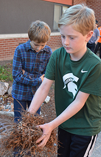 Student Cameron Myershelps clear leaves from the rain garden