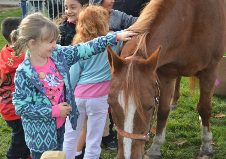 Students meet Sunny the horse