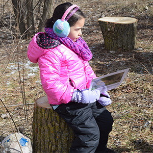Stumps are the outdoor learning classroom seats