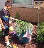 The garden contains a variety of plants hardy enough for curious students to touch