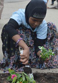 Sumeya Yusuf, 12, from Somalia, plants flowers to commemorate World Refugee Day